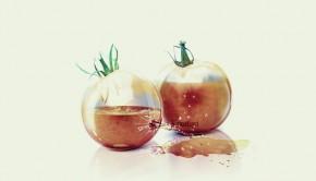 tomato_split_by_amalitsa-d31vax5